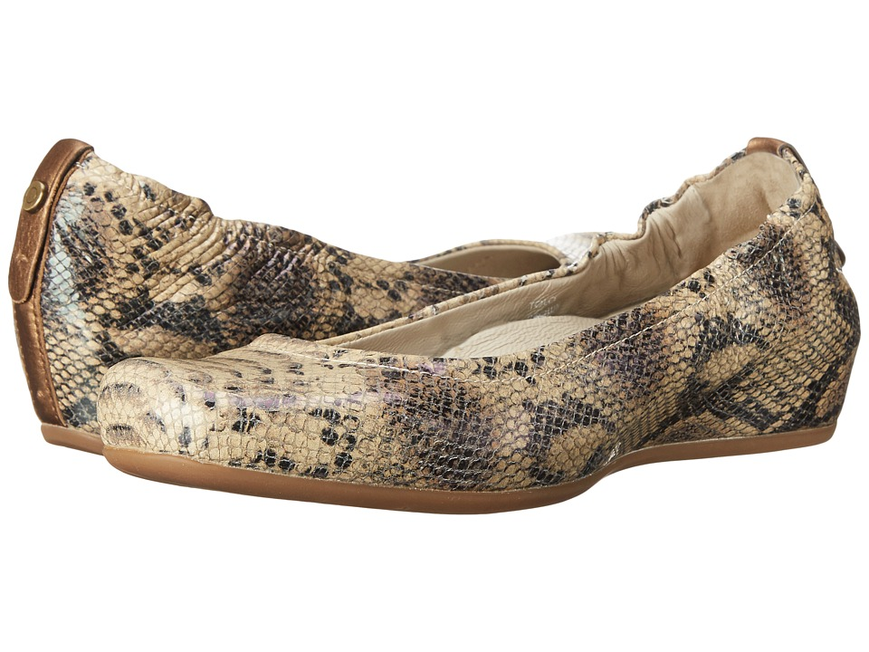 Earth - Tolo Earthies (Brown Multi Snake Print) Women's Shoes