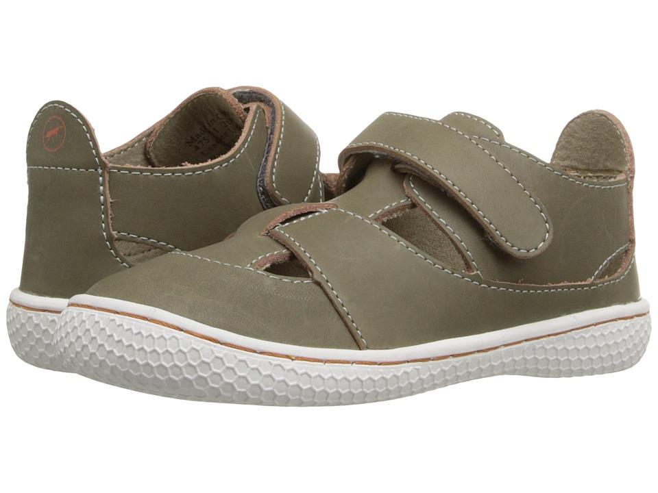 Livie & Luca - Captain (Toddler/Little Kid) (Vintage Gray) Boy's Shoes