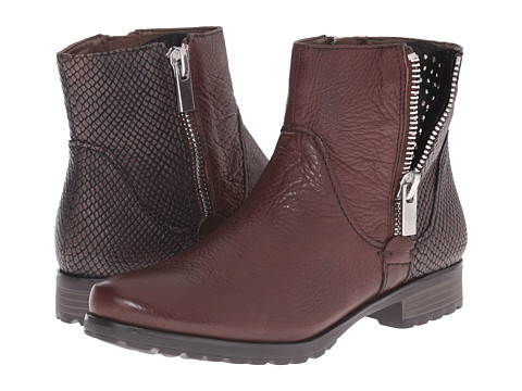 Earth - Sintra 2 Earthies (Dark Brown Leather) Women