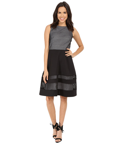 Sangria - Mesh Scuba Mix Fit and Flare (Black/White) Women