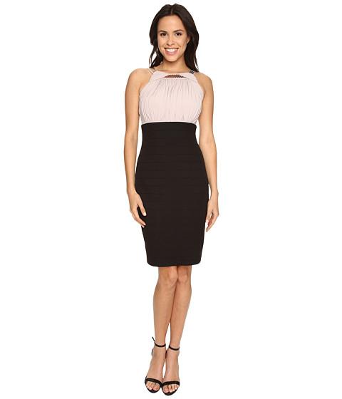 Sangria - Halter Neck Embellished Should Contrast Sheath (Black/Taupe) Women