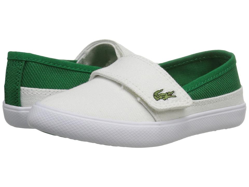 Lacoste Kids - Marice 116 1 SP16 (Toddler/Little Kid) (White/Green) Kid