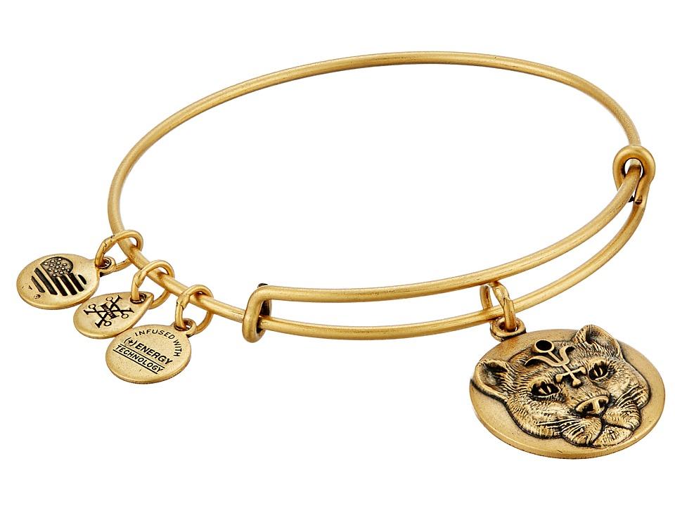 Alex and Ani - Wild Heart Charm Bangle (Rafaelian Gold) Bracelet