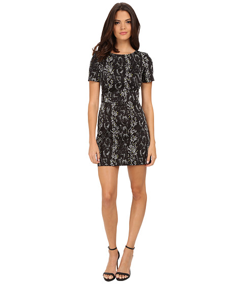 French Connection - Northern Cotton Boa Dress 71EKP (Black/White/Acid Blonde) Women