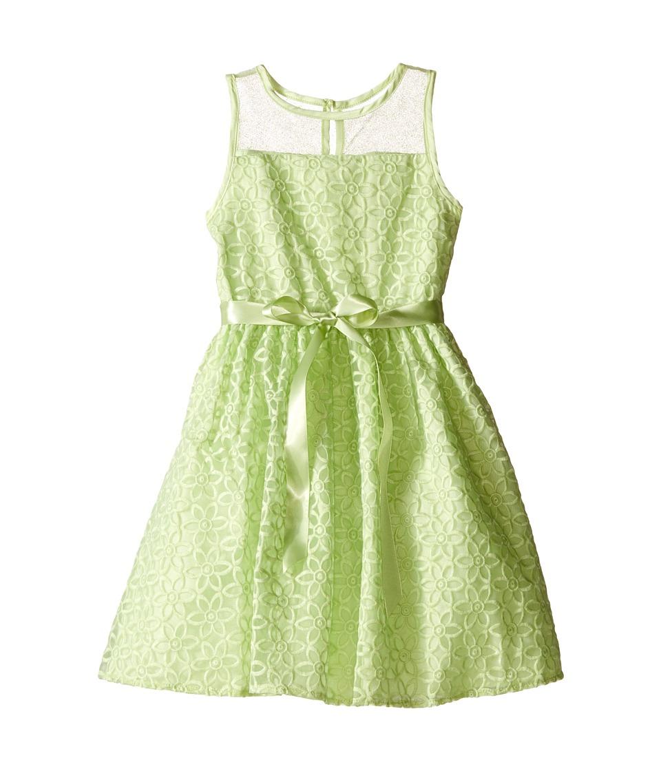Us Angels - Embroidered Daisy Organza Mesh Dress (Toddler/Little Kids) (Mint) Girl's Dress