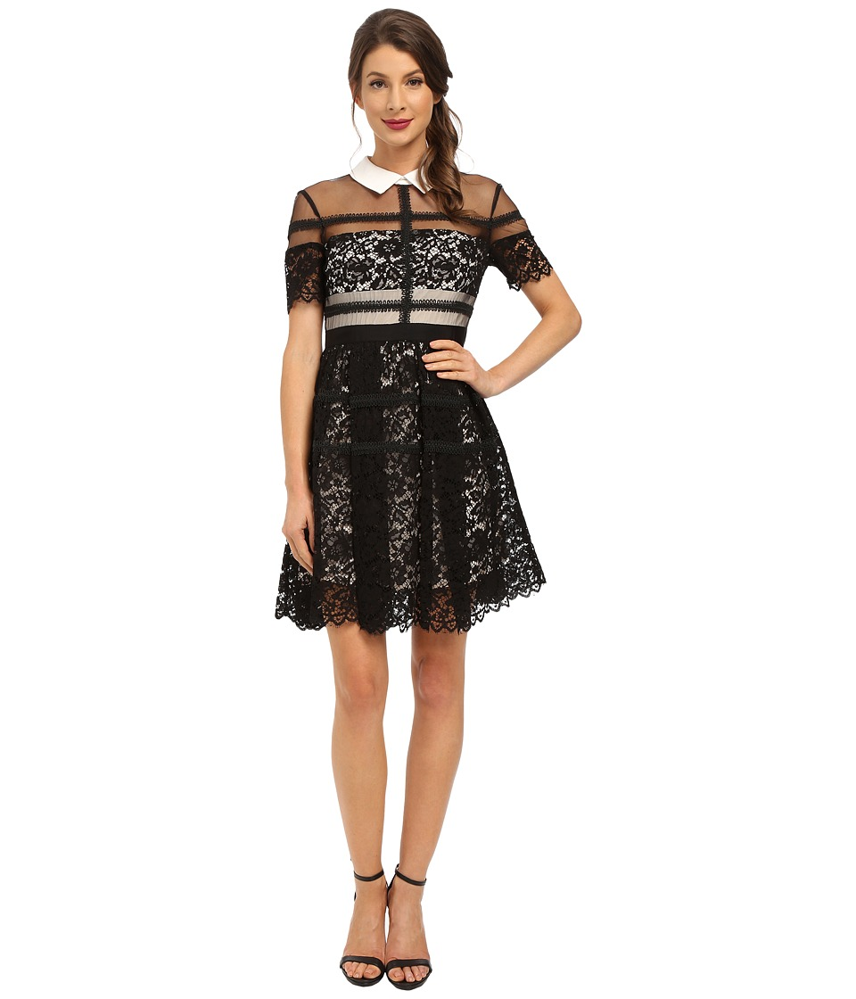 Donna Morgan - Short Sleeve Lace Shirt Dress with Collar (Black) Women