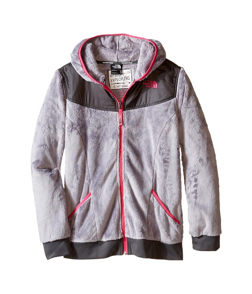 The North Face Kids - Oso Hoodie (Little Kids/Big Kids) (Metallic Silver) Girl's Sweatshirt
