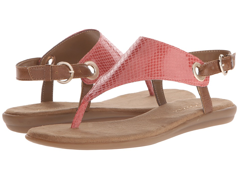 Aerosoles - Conchlusion (Coral Snake) Women's Sandals