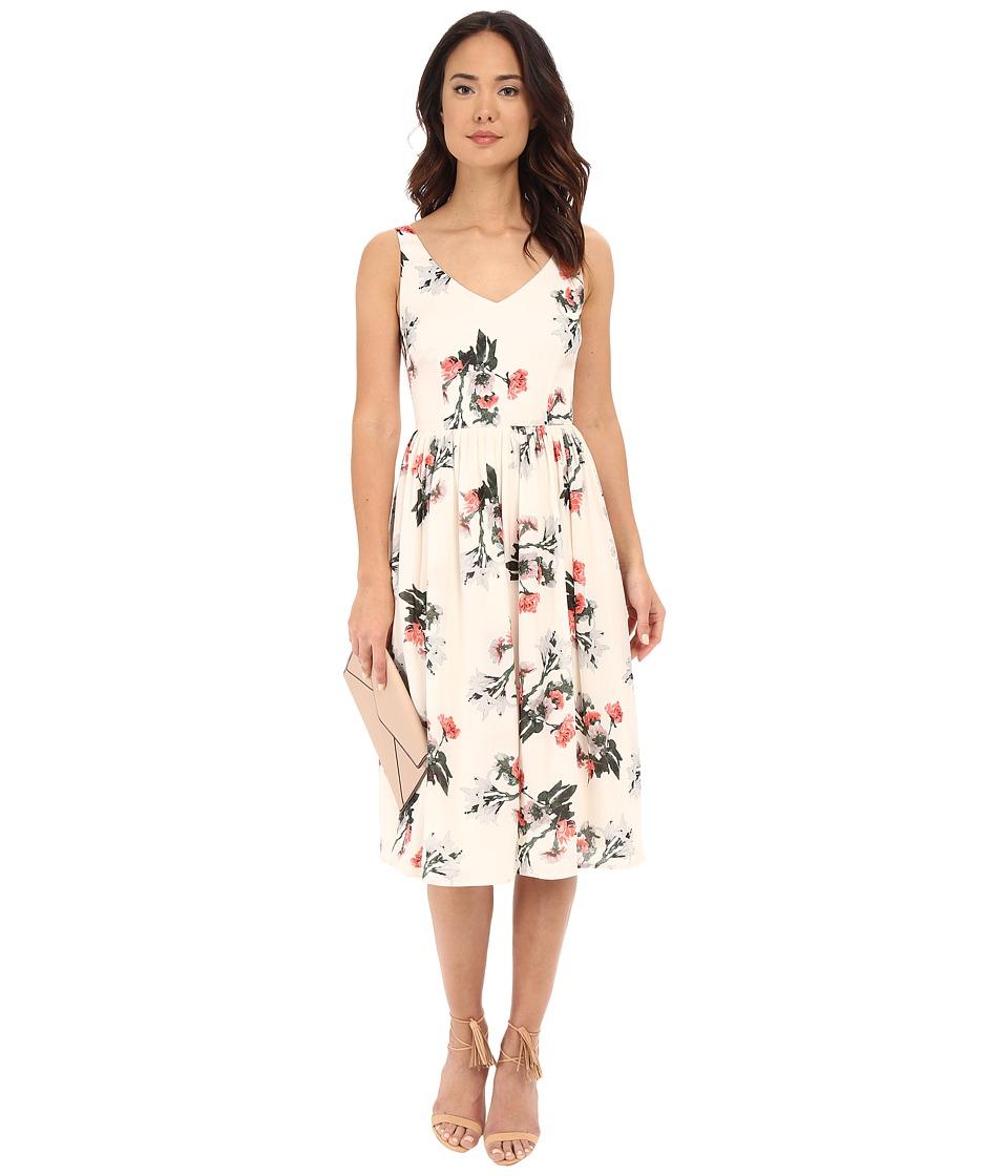 BB Dakota - Emeli Rose Garden Printed Reverse Crepon Dress (Ivory) Women's Dress