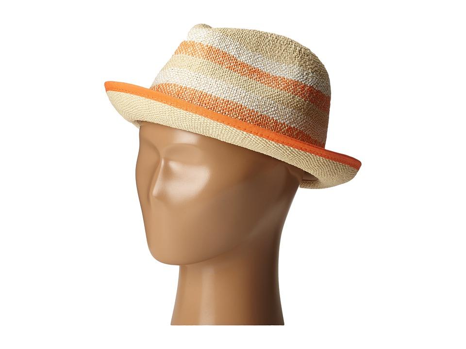 Roxy - Big Swell Stripe Fedora (Lark) Fedora Hats