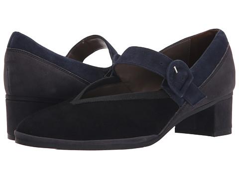 Sesto Meucci - Zandra (Black/Navy/Grey) Women's Shoes