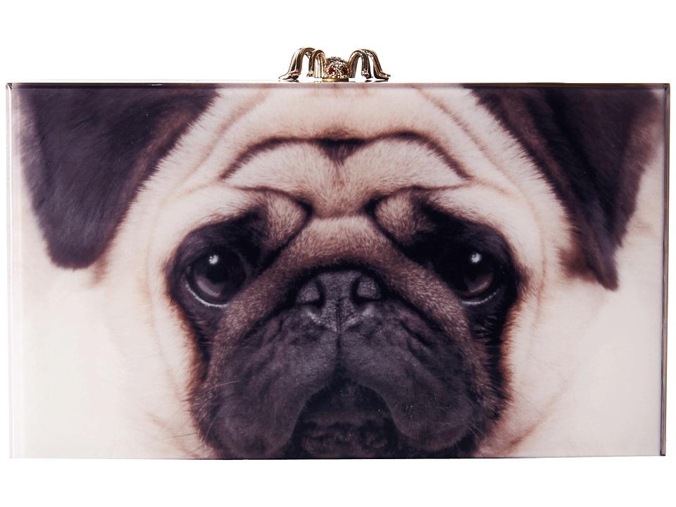 Charlotte Olympia - Printed Pandora (Pug Print) Clutch Handbags