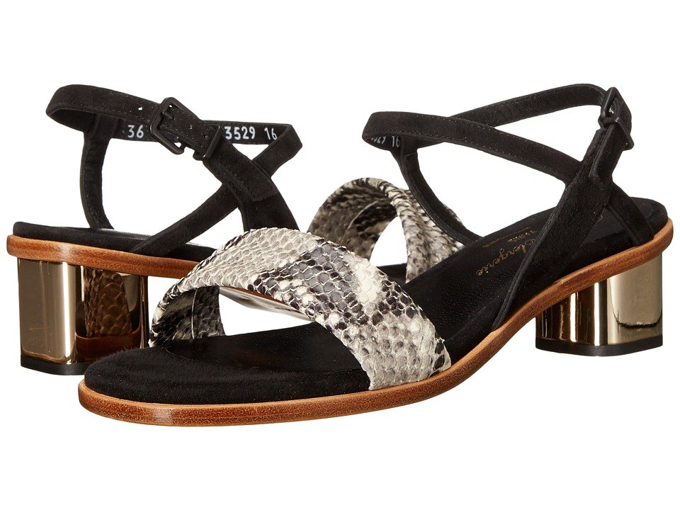 Robert Clergerie - Zen (Black Suede) Women's Shoes