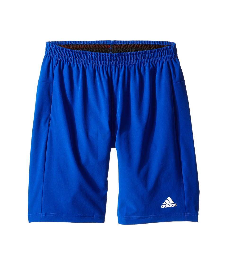 adidas - AK Shorts (Collegiate Royal) Men's Shorts