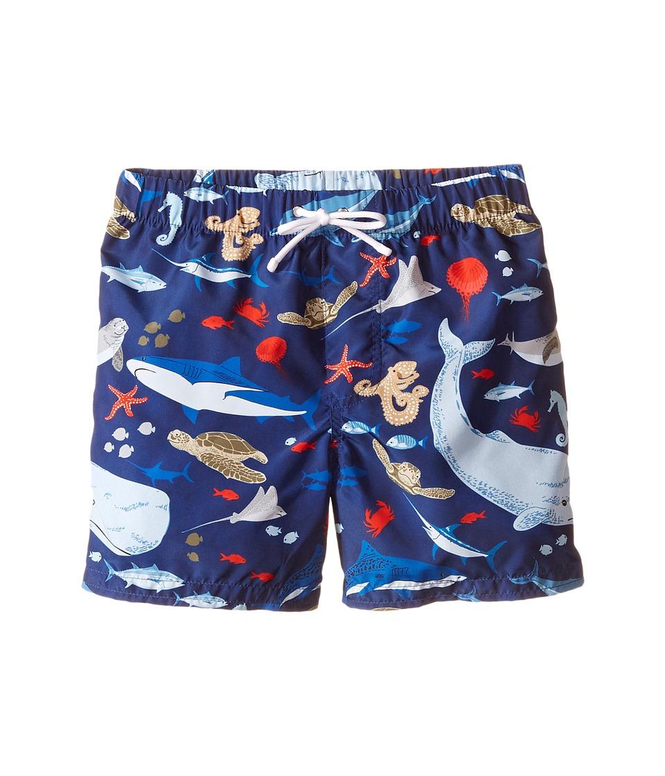 Dolce & Gabbana Kids - Sealife Swimsuit (Toddler/Little Kids) (Blue) Boy's Swimwear