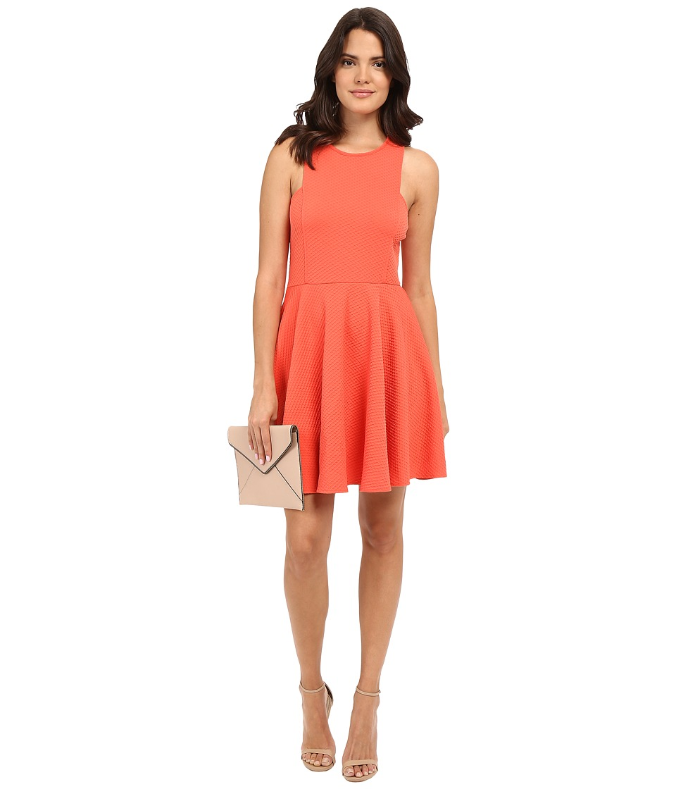 Jack by BB Dakota - Kennet Textured Knit Fit and Flare Dress (Hot Coral) Women's Dress