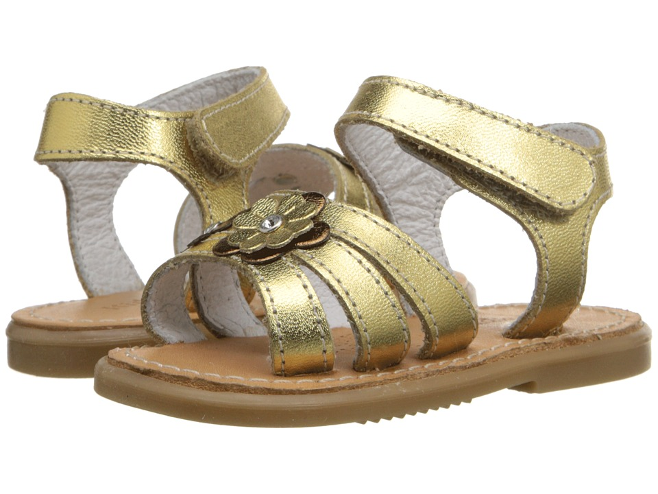 Kid Express - Alina (Infant/Toddler) (Gold Metallic) Girls Shoes