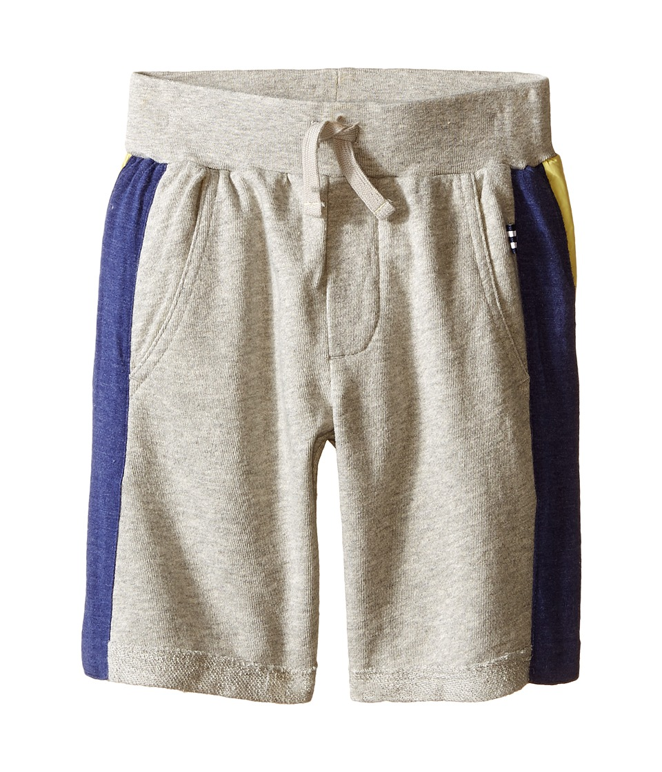 Splendid Littles - Active Shorts (Toddler) (Grey Heather) Boy's Shorts