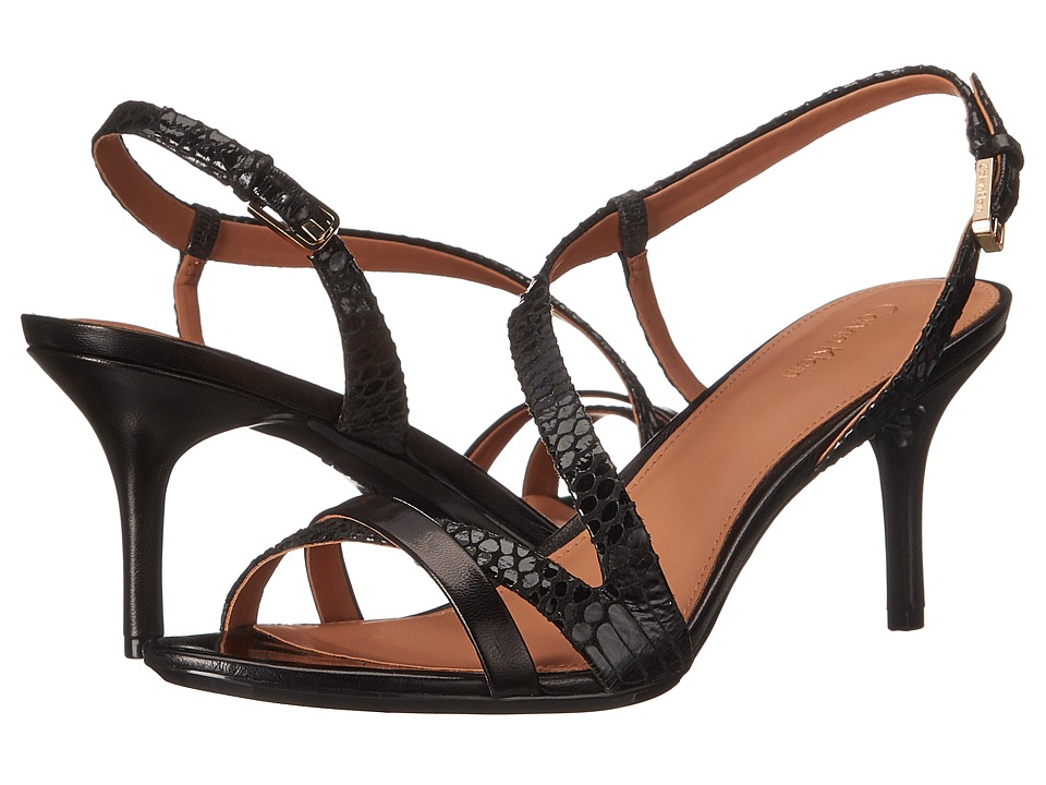 Calvin Klein - Lorren (Black Muted Snake/Leather) Women