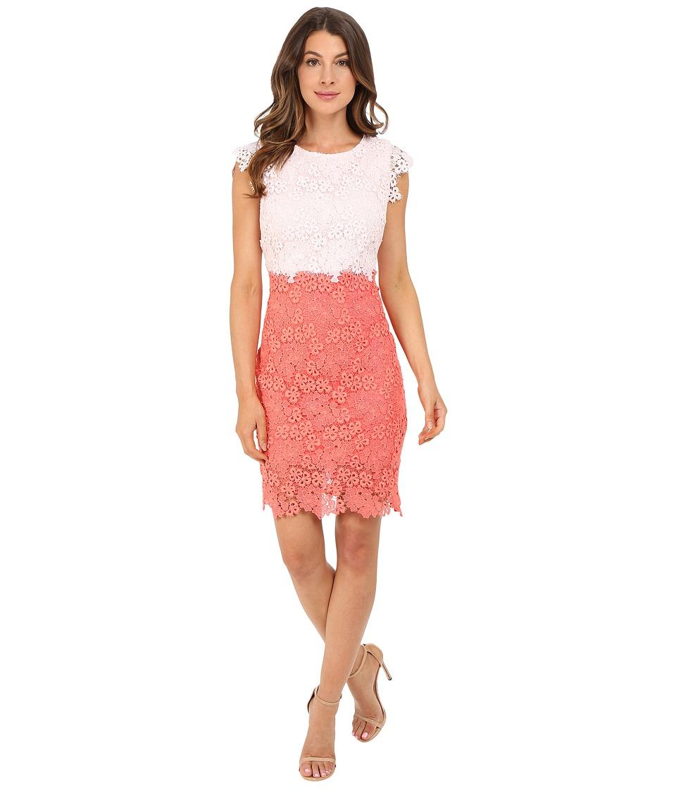 Christin Michaels - Parisian Lace Dress (Pale Pink/Coral) Women's Dress