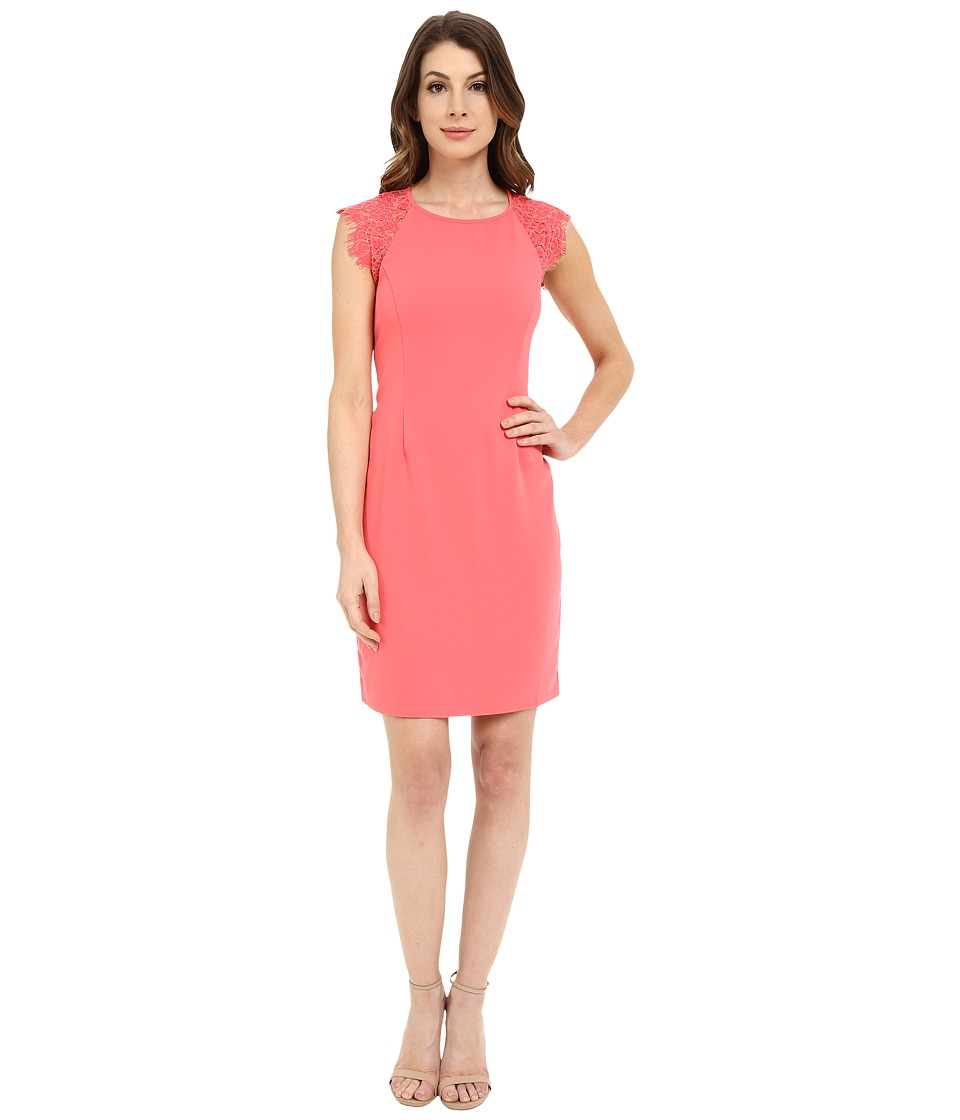 Laundry by Shelli Segal Montreal Stretch Crepe and Lace Cocktail Calypso Coral Dress