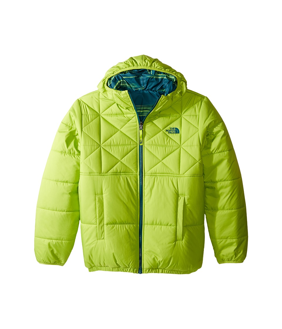 The North Face Kids - Reversible Perrito Jacket (Little Kids/Big Kids) (Chive Green) Boy's Coat