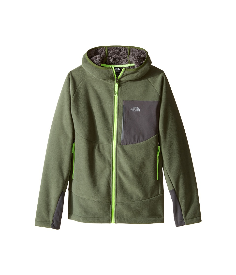 The North Face Kids - Chimborazo Hoodie (Little Kids/Big Kids) (Terrarium Green) Boy's Sweatshirt