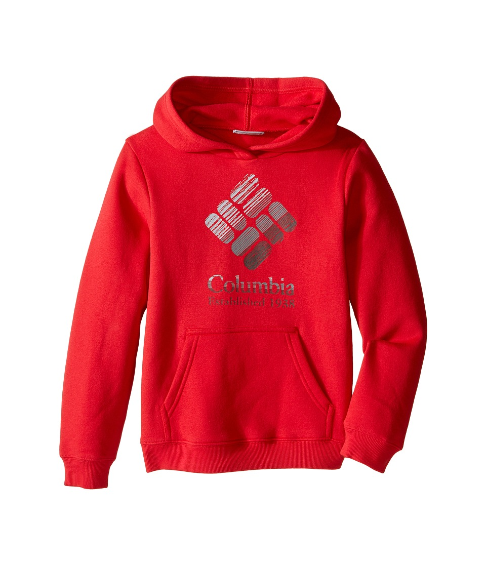 Columbia Kids - Gem Grain Hoodie (Little Kids/Big Kids) (Mountain Red) Boy's Sweatshirt