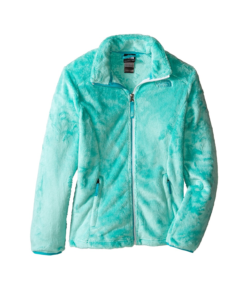 The North Face Kids Osolita Jacket (Little Kids/Big Kids) (Ice Green (Prior Season)) Girl