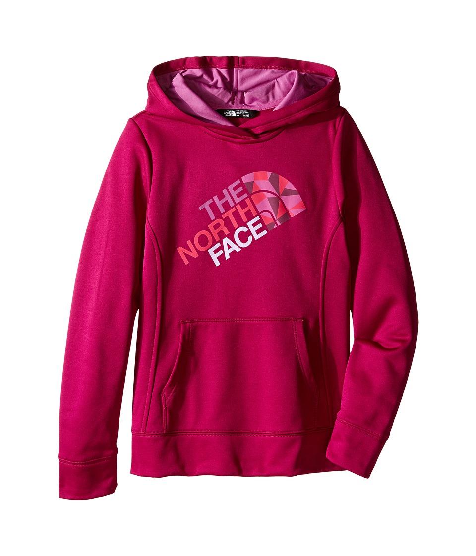 The North Face Kids - Surgent Pullover Hoodie (Little Kids/Big Kids) (Roxbury Pink) Girl's Sweatshirt