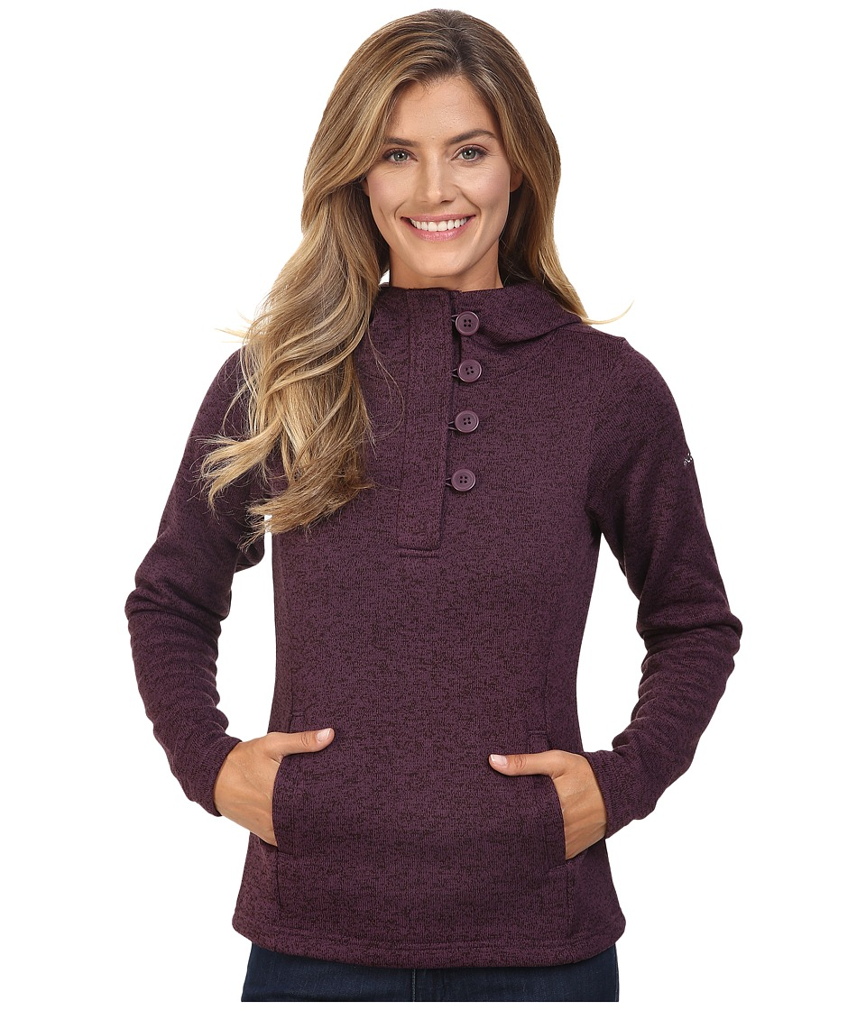 Columbia - Darling Days Pullover Hoodie (Dusty Purple Heather) Women's Sweatshirt