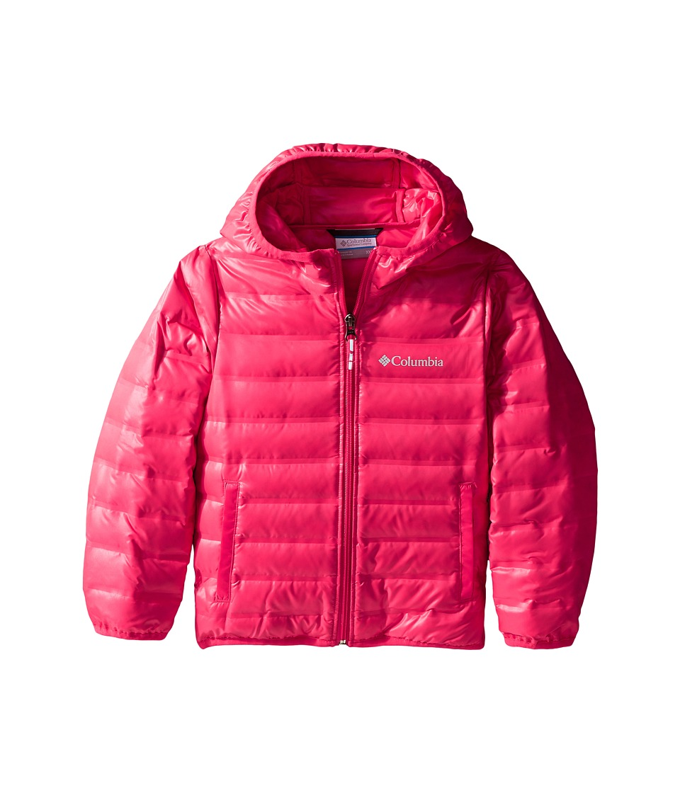 Columbia Kids - Flash Forward Hooded Down Jacket (Little Kids/Big Kids) (Punch Pink) Girl's Coat
