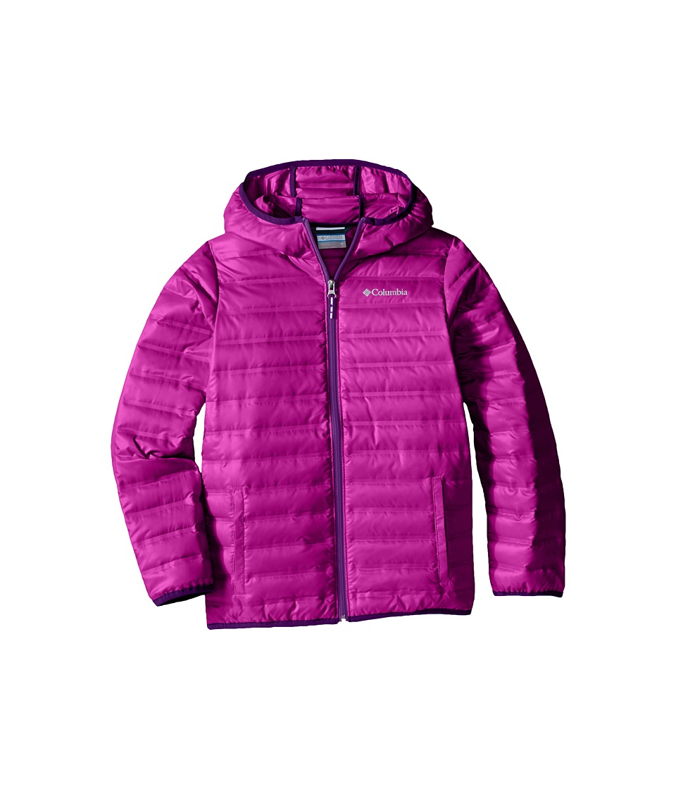 Columbia Kids - Flash Forward Hooded Down Jacket (Little Kids/Big Kids) (Bright Plum/Iris Glow) Girl's Coat