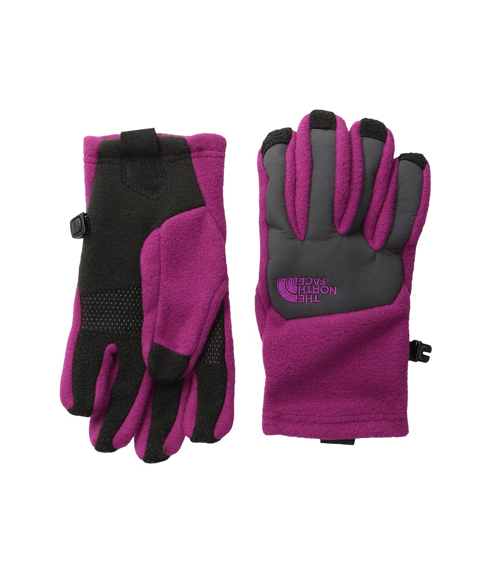 The North Face Kids - Denali Etip Gloves (Big Kids) (Roxbury Pink) Extreme Cold Weather Gloves