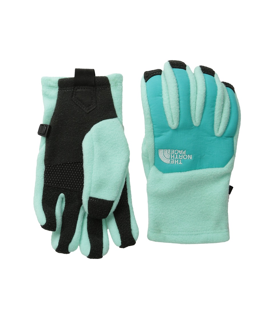 The North Face Kids - Denali Etip Gloves (Big Kids) (Ice Green) Extreme Cold Weather Gloves
