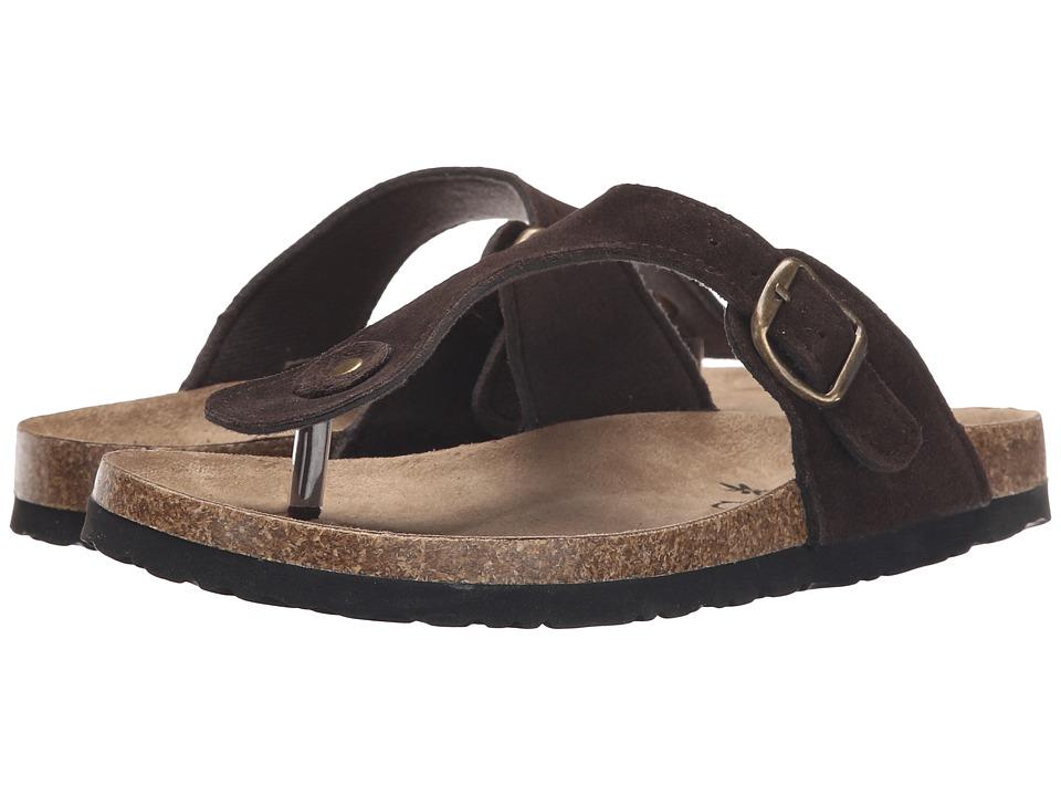 Northside - Bindi (Brown) Women's Shoes