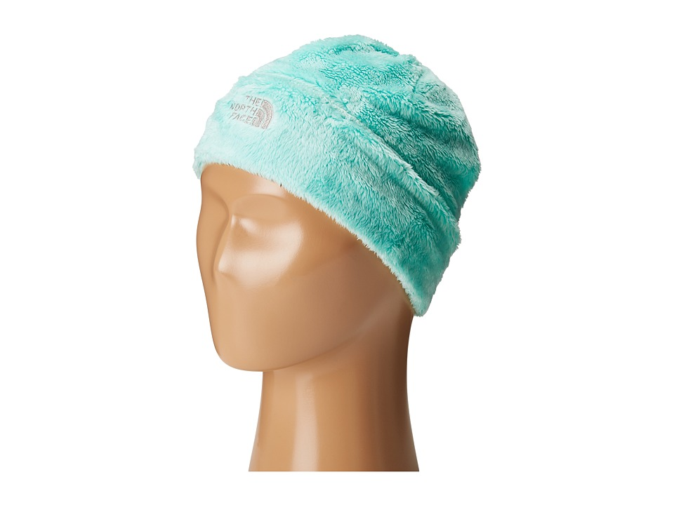 The North Face Kids - Denali Thermal Beanie (Big Kids) (Ice Green) Beanies
