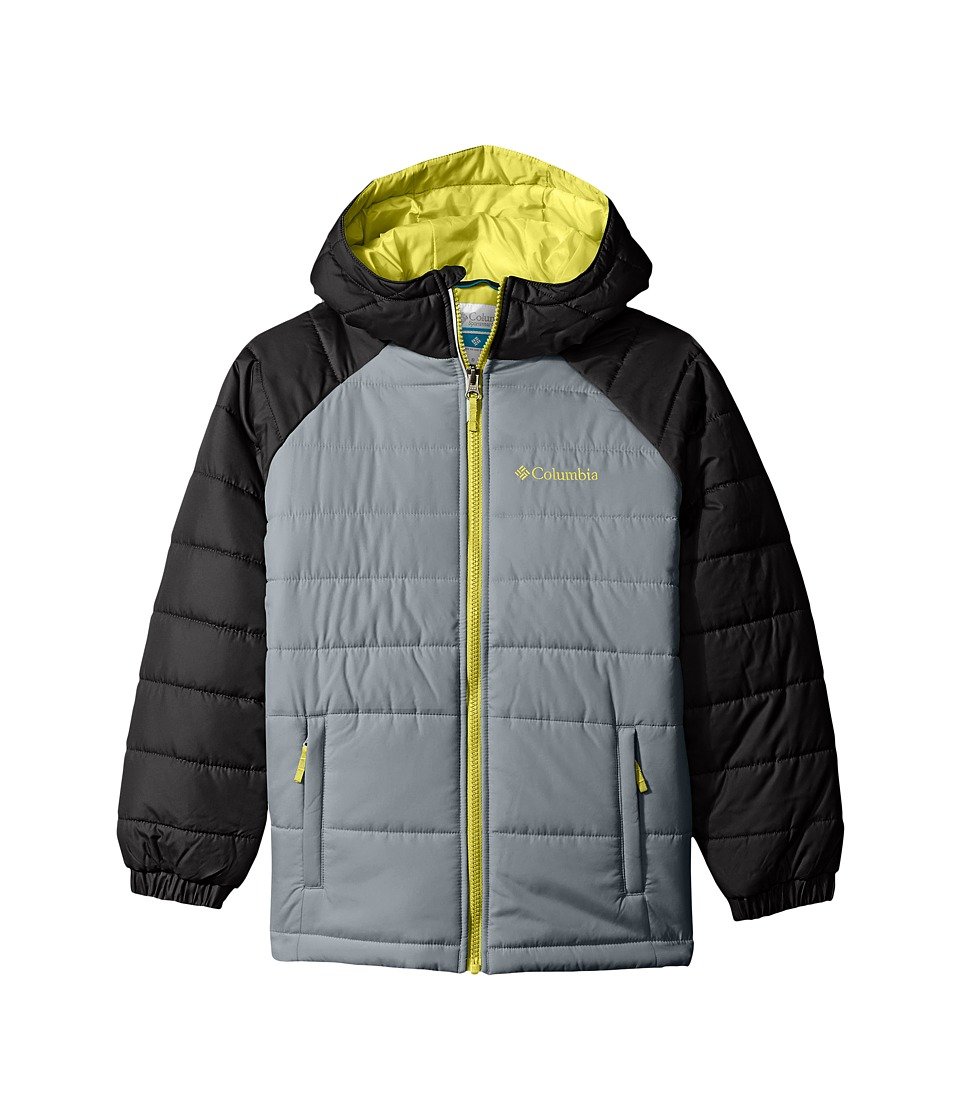 Columbia Kids - Tree Time Puffer Jacket (Toddler) (Grey Ash/Black) Boy's Coat