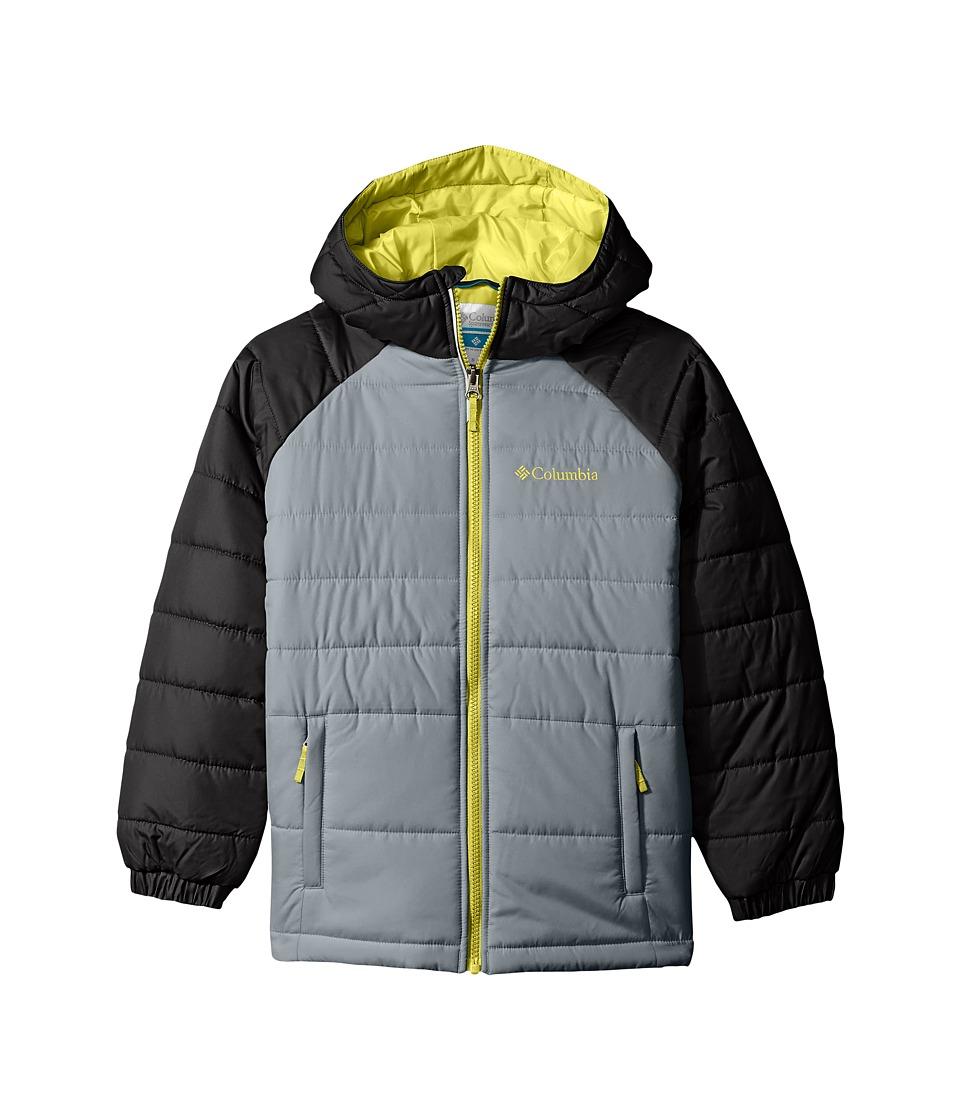 Columbia Kids - Tree Time Puffer Jacket (Toddler) (Grey Ash/Black) Boy's Coat