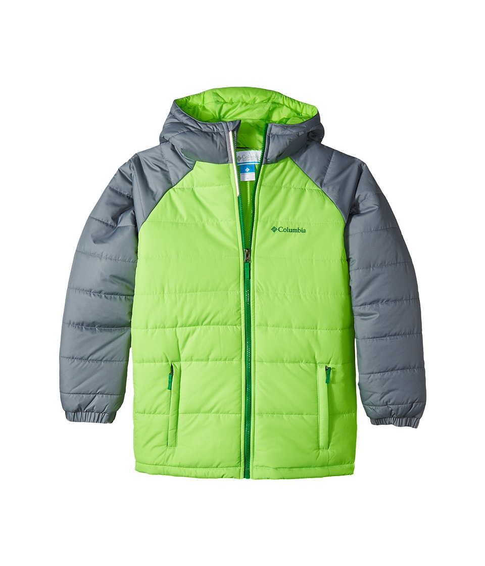 Columbia Kids - Tree Time Puffer Jacket (Toddler) (Green Mamba/Grey Ash) Boy's Coat