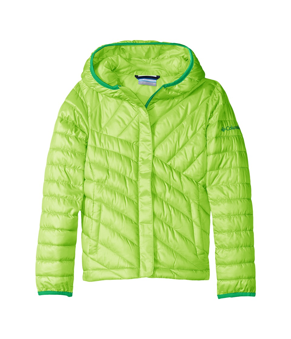 Columbia Kids - Powder Lite Puffer (Toddler) (Green Mamba/Fuse Green) Boy's Coat