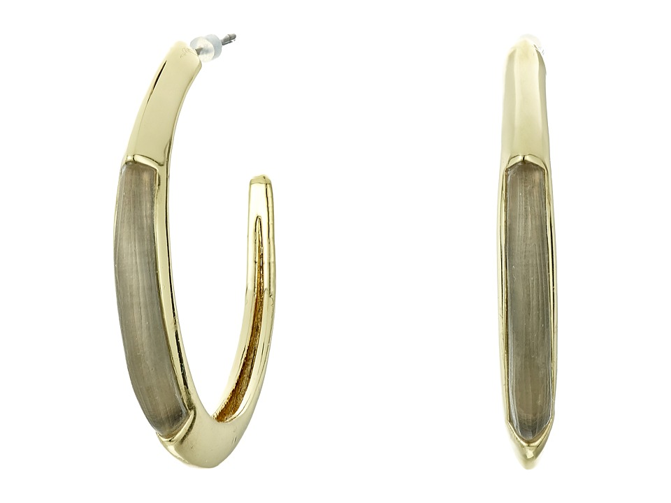 Alexis Bittar - Crescent Hoop Earrings (Warm Grey) Earring