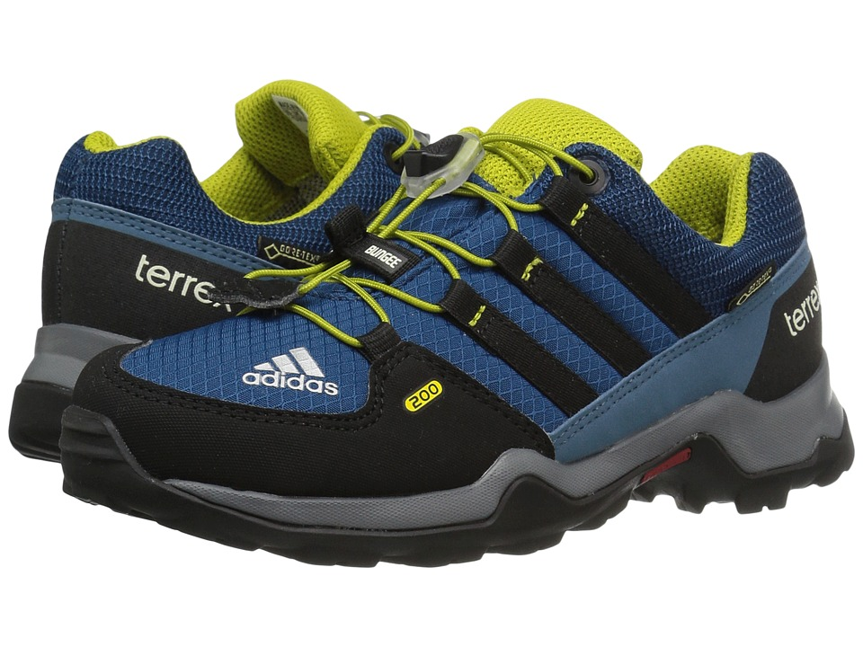 adidas Outdoor Kids Terrex GTX (Little Kid/Big Kid) (Tech Steel/Black/Unity Lime) Boys Shoes