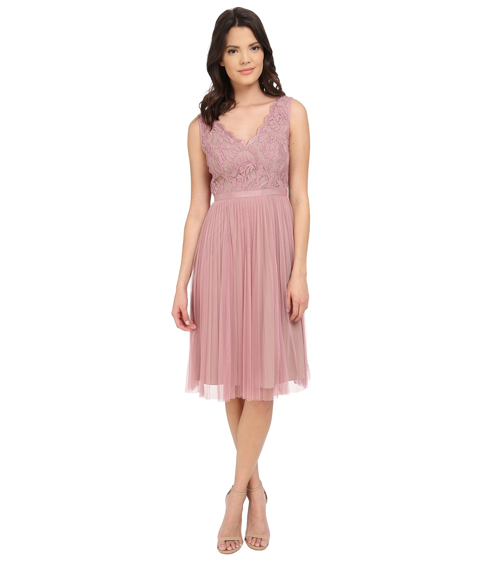 Adrianna Papell Fit and Flare Lace Combo Dress (Ashrose/Tan) Women
