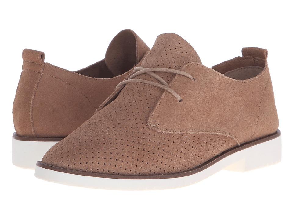 Steve Madden - Tripit (Cognac Suede) Women's Lace up casual Shoes