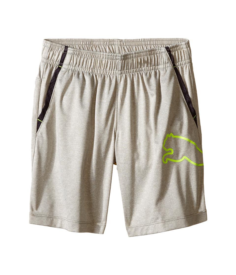 Puma Kids - Tech Comfort Shorts w/ Side Cat (Little Kids) (Light Heather Grey) Boy's Shorts