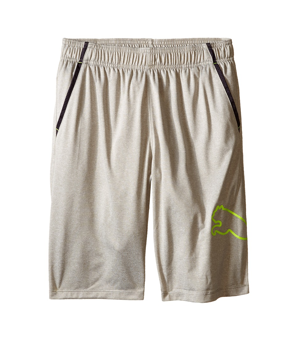 Puma Kids - Tech Comfort Shorts w/ Side Cat (Big Kids) (Light Heather Grey) Boy's Shorts