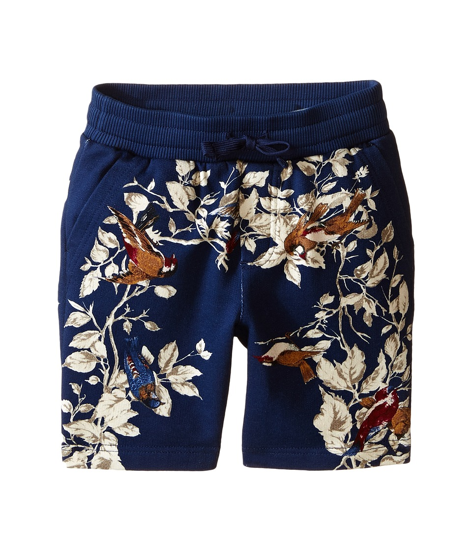 Dolce & Gabbana Kids - Printed Shorts (Toddler/Little Kids) (Blue/Print) Boy's Shorts