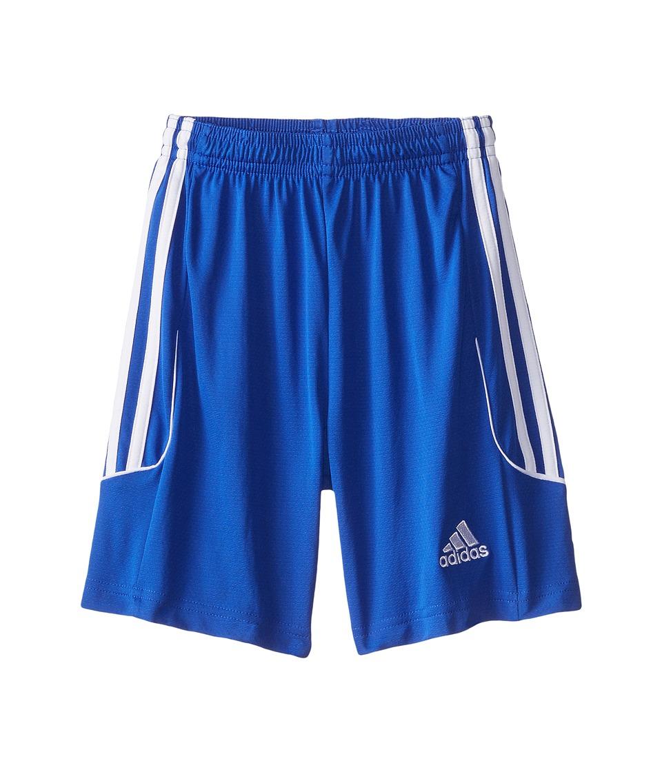 adidas Kids - Squad 13 Shorts (Little Kids/Big Kids) (Bold Blue/White) Kid's Shorts