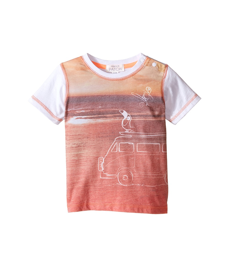 Pumpkin Patch Kids - Turtle Van Tee (Infant) (Sunset Orange) Boy